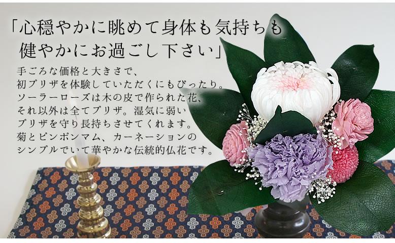 仏花 菩薩花(ぼさつばな)
